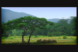 Result by sadun, Photography->Landscape gallery