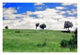 cds7 by ferit, Photography->Landscape gallery