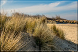 In The Lower Sand Dunes by corngrowth, photography->shorelines gallery