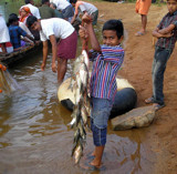 Fish from river by sahadk, Photography->People gallery