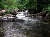 Downhill stream-3 by sahadk, photography->landscape gallery