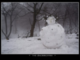 the snowwoman... by fogz, Photography->Sculpture gallery