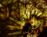 Mathematicus Jack by TRACYJTZ, abstract gallery