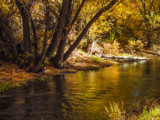 Logan River Walk 06 by nmsmith, photography->landscape gallery