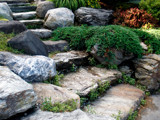 Helpful Stones by edoctober, Photography->Gardens gallery