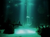 Silence's kingdom by ppigeon, Photography->Underwater gallery