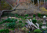 Early Spring at Defries Garden by tigger3, photography->gardens gallery