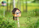 Birdhouse by tigger3, photography->general gallery