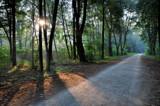 Diagonal walk by ekowalska, photography->landscape gallery