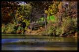 Silver Lake 2 by Jimbobedsel, photography->nature gallery