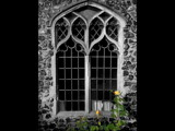 window with roses! cant think of a good title! by JQ, Photography->Architecture gallery