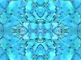 Kaleidoscope #17 by HylianPrincess1985, Photography->Flowers gallery