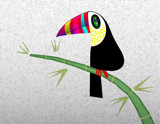 Toucan by bfrank, illustrations gallery