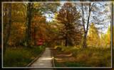 Swan Creek by Jimbobedsel, photography->landscape gallery