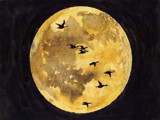 moon fly pass by alby58, Illustrations->Traditional gallery