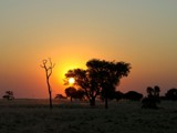 Sunset in the savanna 1 by ppigeon, Photography->Sunset/Rise gallery