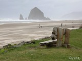 Beach Bench in Oregon by verenabloo, Photography->Shorelines gallery