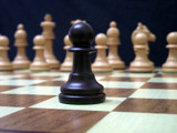 Pawn by Fergus, photography->macro gallery