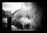 by the river by JQ, Photography->Landscape gallery