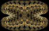 Venus Fly Trap by Flmngseabass, abstract gallery