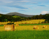 STRAW BALES by LANJOCKEY, Photography->Landscape gallery