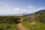 Dipsea Trail by whttiger25, Photography->Landscape gallery