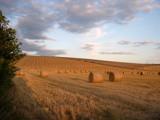 Au Revoir by krt, Photography->Landscape gallery
