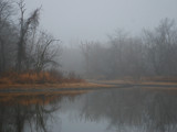 I'm in a fog by wheedance, photography->shorelines gallery