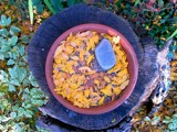 Fall In a Bowl by aitmn10, contests->Fall Festivities gallery