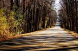 Road To Guntersville Dam by bfrank, photography->landscape gallery
