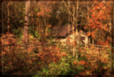 Along The Autumn Trail by Jimbobedsel, photography->landscape gallery