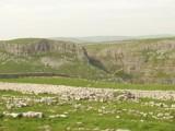 Limestone Pavement by Dale_G_12, photography->landscape gallery