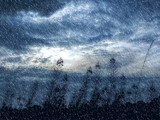 Winter Blue by biffobear, photography->manipulation gallery