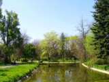 Morning in the Park by koca, photography->landscape gallery