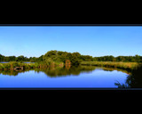 Lake Ontario Marsh-yy by troubadour64, Photography->Shorelines gallery