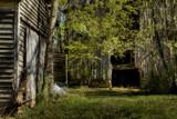 Morning Light by zunazet, photography->landscape gallery
