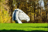 'Horse Ride' In The Fall by corngrowth, photography->sculpture gallery