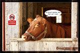Sauder Village 15,   How Now Brown Cow by Jimbobedsel, Photography->Manipulation gallery