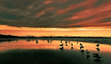 Some Enchanted Evening by LynEve, Photography->Shorelines gallery