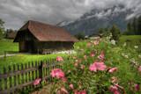 Alpine garden by Paul_Gerritsen, Photography->Gardens gallery