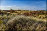 'Winter' In The Sand Dunes by corngrowth, photography->shorelines gallery