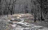 Devils Backbone by markw5586, Photography->Landscape gallery