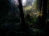 Midday Highlights by mayne, photography->landscape gallery