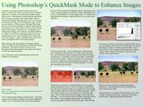 Tutorial-Using Photoshop to Enhance Photos Part 1 by nmsmith, Tutorials gallery