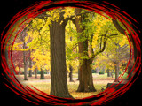 Autumn 2004 Portal by jojomercury, Photography->Manipulation gallery
