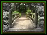 Greener by orangecrazy, Photography->Manipulation gallery
