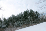 Michigan Winter#2 by MustangGirl95, photography->landscape gallery