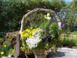 A Tisket A Tasket by nancymcarney, Photography->Flowers gallery