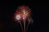 Bouquet In the Sky by rriesop, Photography->Fireworks gallery