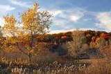 Prairie Walk by Silvanus, photography->landscape gallery